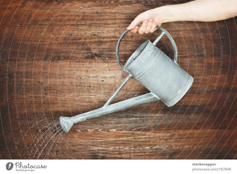 Bewässerung Hand Beteiligung Griffe Gießkanne Dose grau Wasser eingießen Gießen bestäuben Gartenarbeit unkenntlich Wand Objektfotografie
