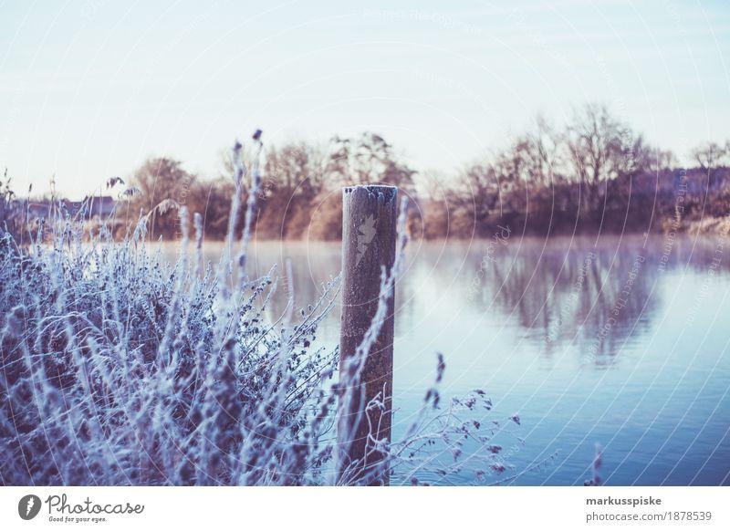 Eiskristall Morgentau Ferien & Urlaub & Reisen Pflanze Blume Landschaft Tier Ferne Winter kalt Leben Gras Schnee Freiheit träumen Feld Ausflug