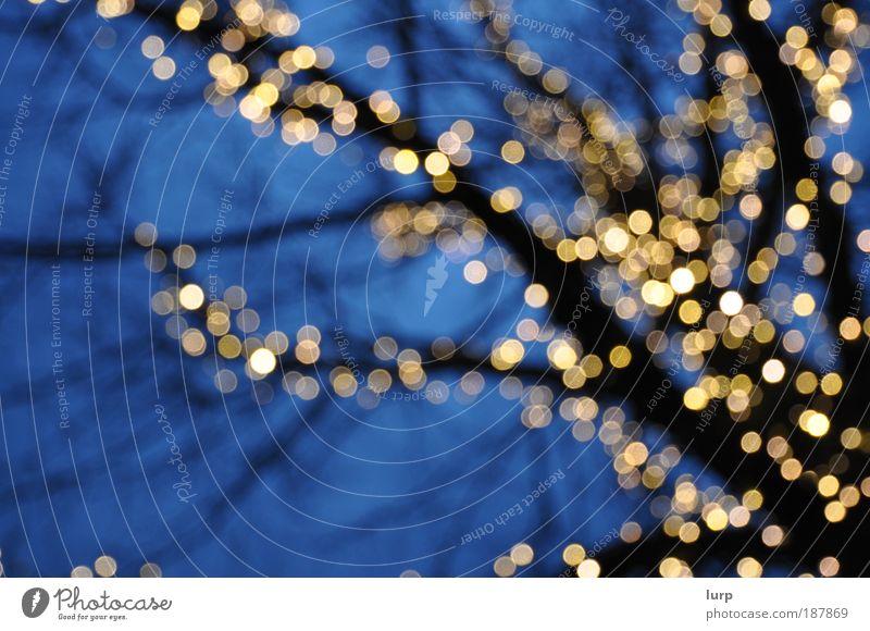 Kasulzkes Weihnachtsgeschenk blau Baum Winter schwarz kalt Silvester u. Neujahr Schmuck Weihnachtsdekoration Lichtpunkt Lichterkette