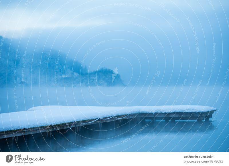 Schnee bedeckter Steg im Winter Freizeit & Hobby Angeln Schwimmen & Baden Schlittschuhlaufen Umwelt Natur Landschaft Wasser Himmel Horizont Nebel Eis Frost See