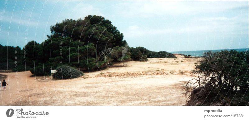 Strand auf Mallorca Sonne Meer Sommer Spanien