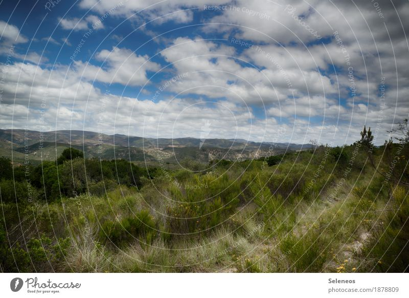 Wanderwege Sinnesorgane Erholung ruhig Ferien & Urlaub & Reisen Tourismus Ausflug Abenteuer Ferne Freiheit Umwelt Natur Landschaft Himmel Wolken Horizont Klima