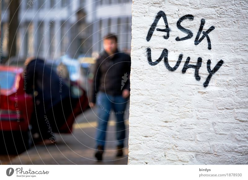 Fragen kostet nix Mensch Frau Jugendliche Stadt Junger Mann Erwachsene Wand Mauer gehen Verkehr PKW Schriftzeichen authentisch Neugier Bürgersteig
