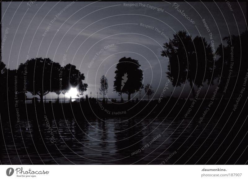 Lautlos See Wasser Reflexion & Spiegelung Silhouette Baum Schatten Sonne Licht Mensch Himmel Stern Abend lau Sommer ruhig