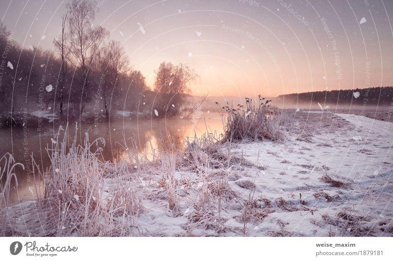 Nebelhafte Dämmerung des Winters auf dem Fluss. Schneeflocken, Schneefall Himmel Natur Ferien & Urlaub & Reisen Wasser weiß Baum Landschaft Wald Wege & Pfade