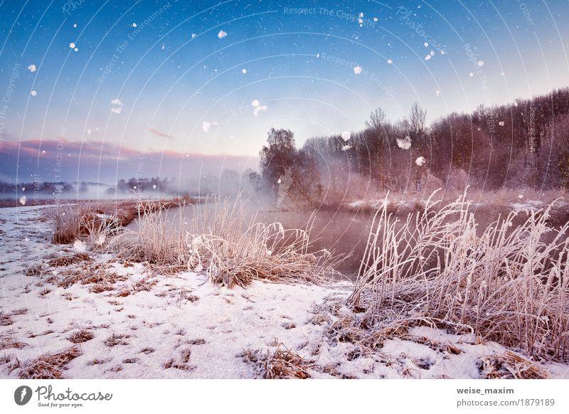 Nebelhafte Dämmerung des Winters auf dem Fluss. Schneeflocken, Schneefall Himmel Natur Ferien & Urlaub & Reisen blau weiß Baum Landschaft Wald Wiese natürlich