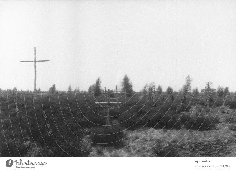Todesstreifen ruhig Tod Rücken Amerika Denkmal Friedhof erinnern besinnlich Heide fatal