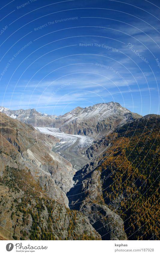 Grosser (?) Aletschgletscher Umwelt Natur Landschaft Himmel Wolken Herbst Klima Klimawandel Schönes Wetter Wald Felsen Alpen Berge u. Gebirge Gipfel Gletscher