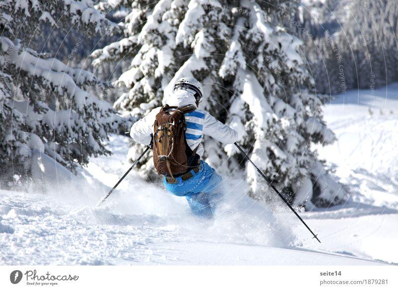 Skier skiing off piste. Powder. Freeski. Freeride Natur Ferien & Urlaub & Reisen Jugendliche weiß Junger Mann Ferne Winter Wald 18-30 Jahre Berge u. Gebirge