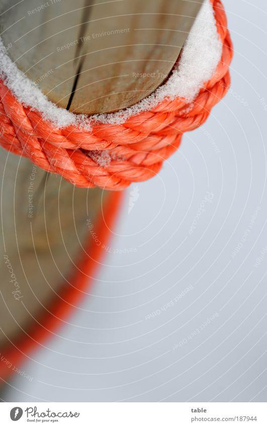 close contact Winter Schnee Seil Umwelt Natur Eis Frost Holz Kunststoff berühren frieren fest kalt Vertrauen Sicherheit Wachsamkeit gefährlich Farbe einzigartig