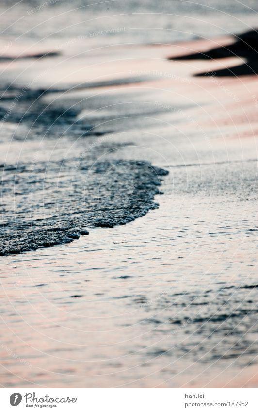 Gezeiten Sommerurlaub Strand Meer Wellen Sand Wasser Wassertropfen Schönes Wetter Küste See Bewegung träumen Flüssigkeit Flut Ebbe Tiefenschärfe fließen