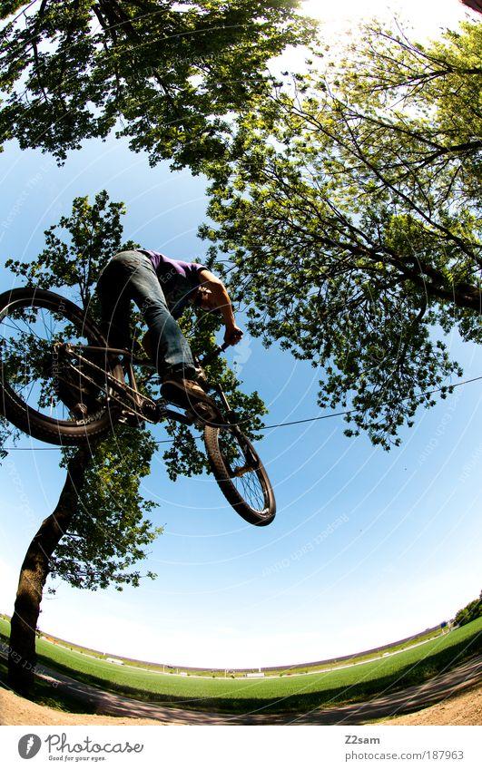 alles muss raus!!!!!! Mensch Jugendliche Sonne Sport Umwelt Landschaft Gras Erwachsene Stil Bewegung Feld Freizeit & Hobby Fahrrad fliegen maskulin Mann