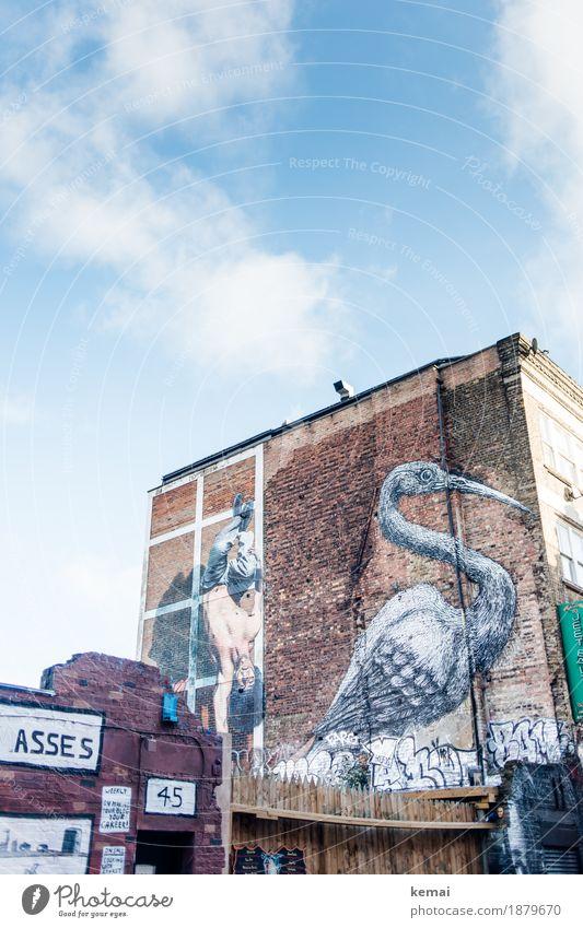 Asses Himmel Stadt Haus Wand Graffiti Lifestyle Stil Gebäude Mauer Kunst außergewöhnlich Freiheit Vogel Tourismus Fassade Stadtleben