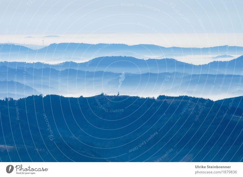 Schwarzwaldhöhen 1 Himmel Natur Ferien & Urlaub & Reisen Pflanze Baum Landschaft Winter Wald Berge u. Gebirge Umwelt kalt Tourismus Nebel liegen Ausflug wandern