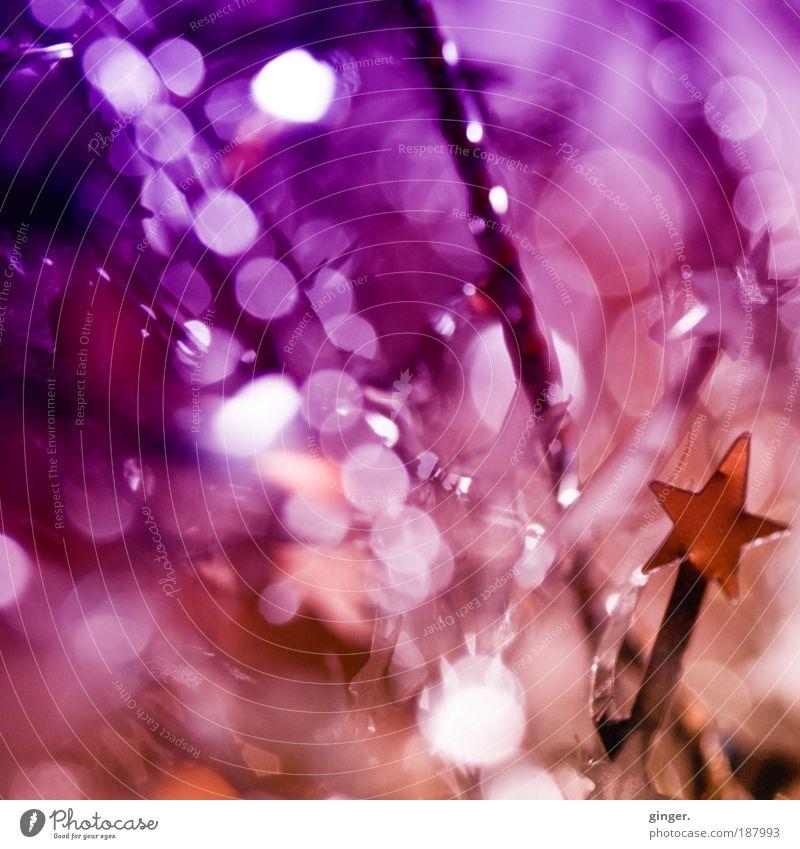 Prosit Neujahr !!! Weihnachten & Advent Feste & Feiern rosa gold glänzend Dekoration & Verzierung Stern (Symbol) Wunsch Zeichen Punkt Reflexion & Spiegelung