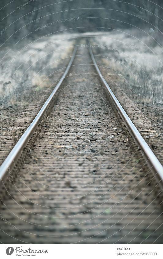 Es fährt ein Zug ... alt kalt Herbst Tod Traurigkeit braun glänzend Hoffnung Sicherheit Güterverkehr & Logistik Ende fest lang Gleise Neugier Mobilität