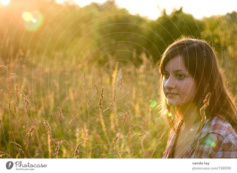 Natürlich Frau Mensch Natur Jugendliche schön Pflanze Sommer Sonnenuntergang Leben feminin Gras Zufriedenheit Tiefenschärfe Zeit Erwachsene