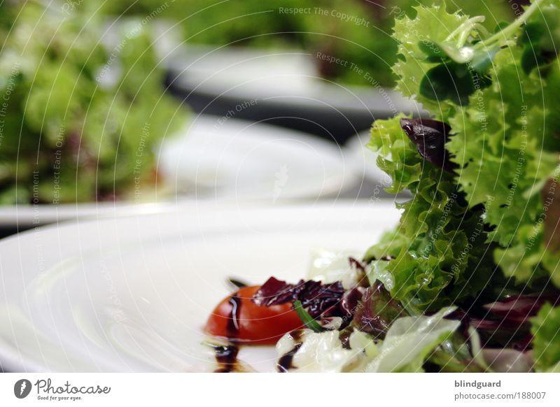 Mehr Vitamine in 2010 Lebensmittel Salat Salatbeilage Ernährung Geschäftsessen Vegetarische Ernährung Diät Fasten Teller Übergewicht Wohlgefühl Feste & Feiern