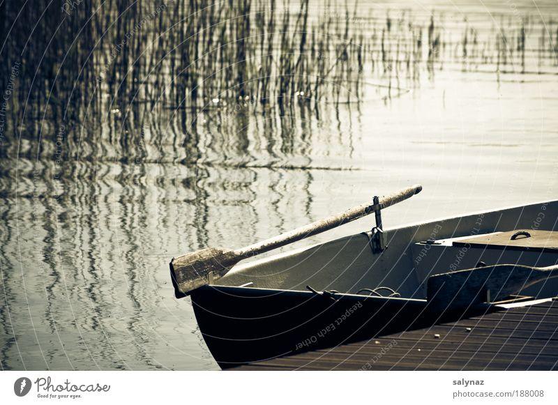 _ Freizeit & Hobby Ferien & Urlaub & Reisen Freiheit Sommer Natur Wasser Seeufer Ruderboot Steg Erholung schaukeln träumen frei blau braun gold weiß Stimmung
