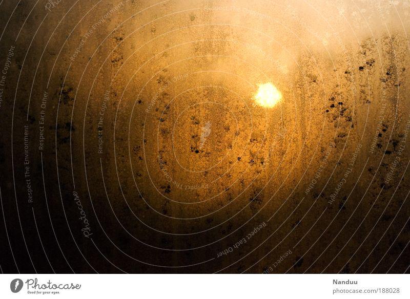 Ein neuer Tag. schön Sonne ruhig Fenster Natur dreckig gold Sonnenaufgang Schönes Wetter Scheibe Neuanfang Chance Morgen abstrakt Kondenswasser beschlagen