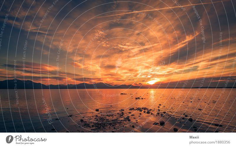 Chiemsee Sonnenuntergang Natur Landschaft Wasser Himmel Wolken Sonnenaufgang Winter Schönes Wetter Wellen Seeufer glänzend Unendlichkeit Wärme blau mehrfarbig