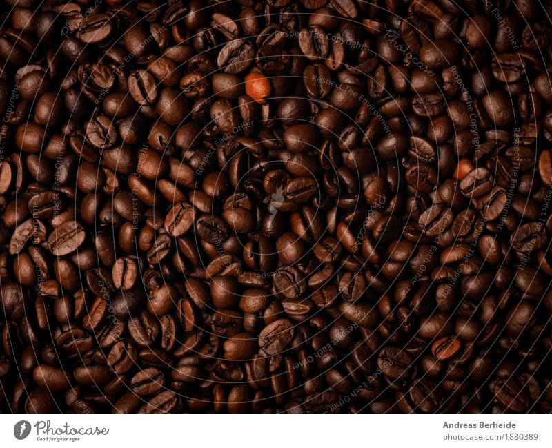Viele Espressobohnen Getränk Kaffee Duft lecker braun coffee cup Hintergrundbild beans Café brown aromatisch breakfast caffeine table fresh hot morning grain