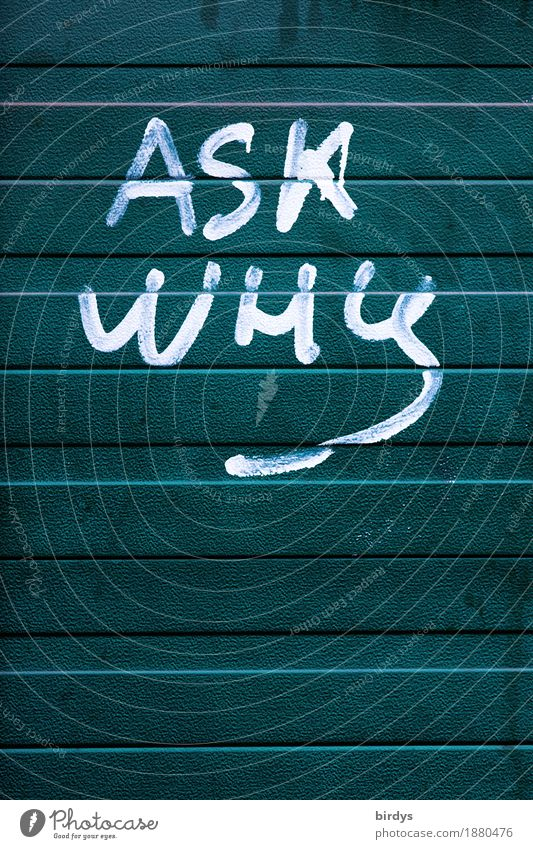 Forum Mauer Wand Metall Zeichen Schriftzeichen Graffiti Linie einzigartig positiv rebellisch grün weiß Erfolg Mut Wachsamkeit gewissenhaft Wahrheit Neugier