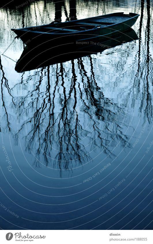 blaue Stunde - 5. Die Wirklichkeit Natur Wasser Baum Pflanze ruhig kalt Erholung träumen See Zufriedenheit warten Umwelt Romantik Wasserfahrzeug