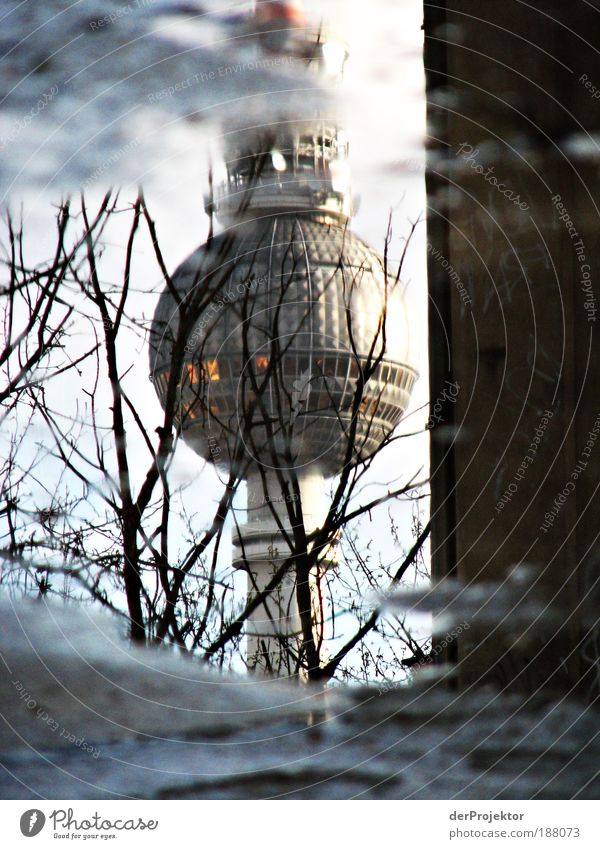 Pfützen-Alex Berliner Fernsehturm Menschenleer Turm Bauwerk Architektur Sehenswürdigkeit Wahrzeichen Denkmal Stein Glas Metall Stahl trendy historisch hoch