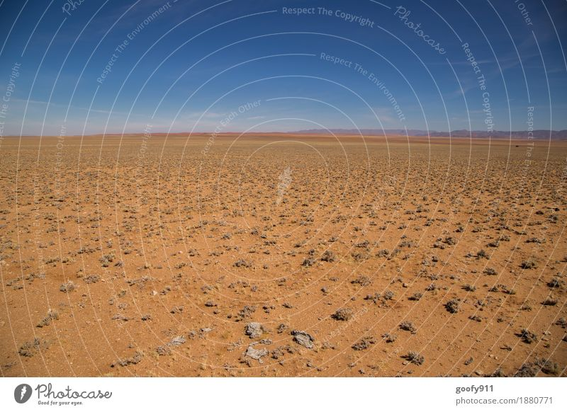 Die Weite Namibias Ferien & Urlaub & Reisen Ausflug Abenteuer Ferne Freiheit Safari Sommer Sonne Umwelt Natur Landschaft Erde Sand Luft Himmel