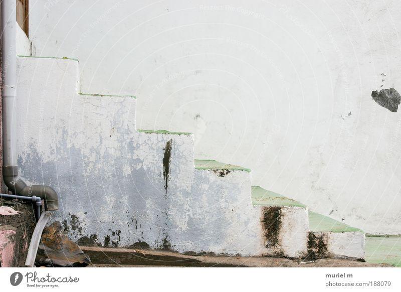 treppauf weiß grün Haus Ferne Wand grau Mauer Wege & Pfade Gebäude hell Architektur Beton Fassade Treppe Wachstum