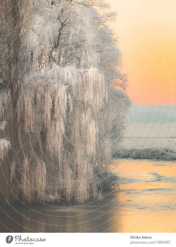 Winter Impressionen Design Ferien & Urlaub & Reisen Schnee Winterurlaub Innenarchitektur Dekoration & Verzierung Tapete Bild Leinwand Postkarte