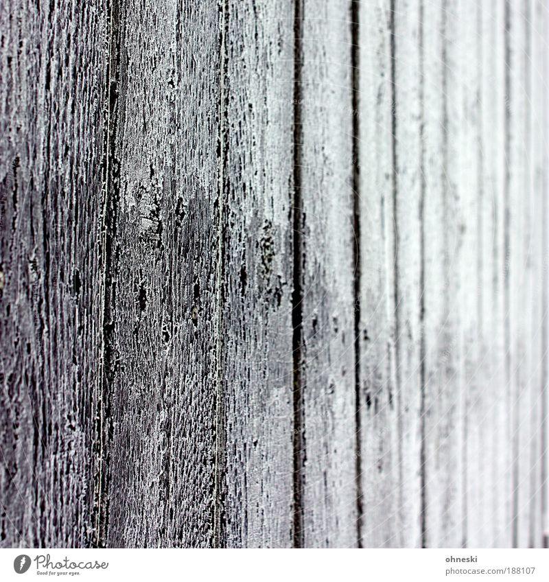 Frostig Winter Eis Mauer Wand Garten Zaun Gartenzaun Holz schwarz weiß Maserung Holzbrett Raureif Gedeckte Farben Außenaufnahme Nahaufnahme abstrakt Muster