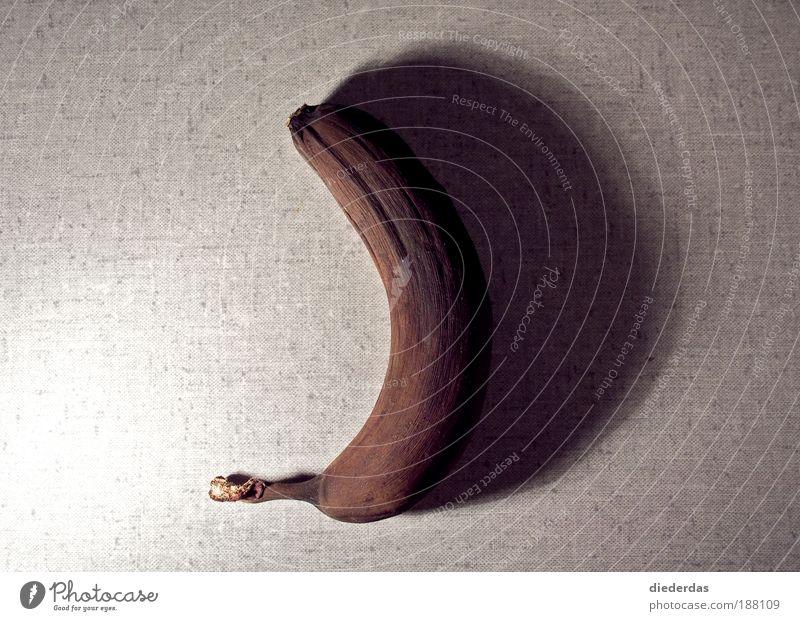 Krumme Sache Frucht Bioprodukte außergewöhnlich gruselig natürlich retro rund trist trocken braun grau Gefühle Traurigkeit Trauer Tod bequem Farbfoto