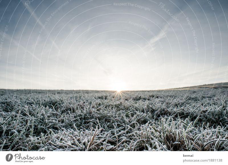 And all of a sudden, it's a new day. Himmel Natur Pflanze schön Sonne Landschaft ruhig Ferne Winter Umwelt kalt Wiese Gras Freiheit Stimmung Horizont