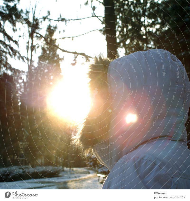 ein echtes Sonnenkind! Frau Mensch Natur Erwachsene feminin Schnee Umwelt Stil Luft träumen Park Eis Abenteuer ästhetisch Fröhlichkeit Lifestyle