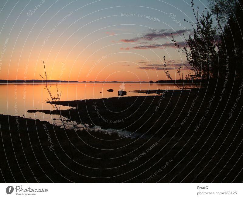 Abends am See Natur Wasser schön Himmel blau Ferien & Urlaub & Reisen ruhig Farbe Erholung Landschaft Zufriedenheit Stimmung gold Horizont Frieden