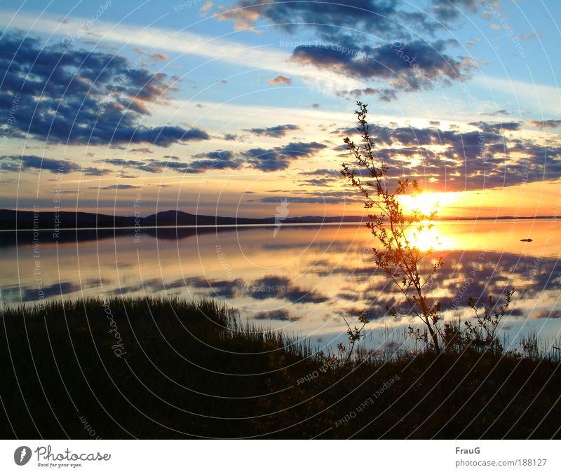 Sonnenuntergang Erholung ruhig Sonnenaufgang See Wasser genießen leuchten schön blau gold Stimmung Zufriedenheit Farbe Frieden Horizont Natur Umwelt Schweden