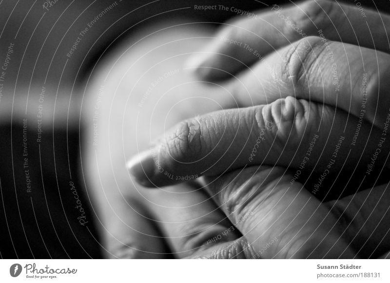 abwarten. Mann Hand Erwachsene Arme Haut maskulin Finger Hautfalten 18-30 Jahre dünn Erwartung Fingernagel Skelett geduldig kreuzen