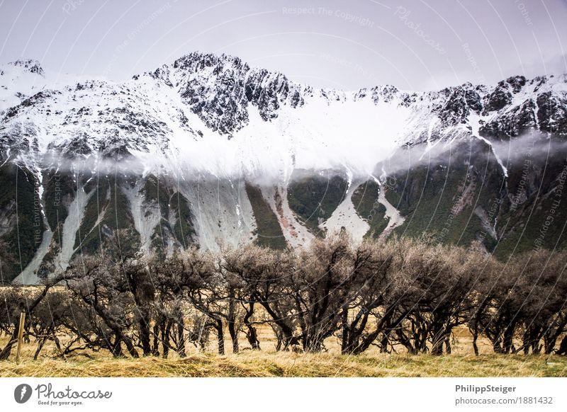 Mount Cook National Park Natur Landschaft Wolken Herbst Klima schlechtes Wetter Nebel Schnee Sträucher Wildpflanze Berge u. Gebirge Schneebedeckte Gipfel
