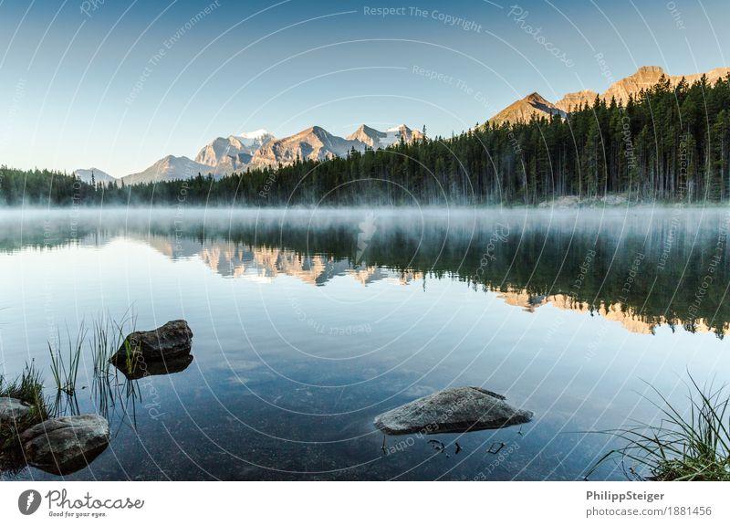 Herbert Lake Landschaft Wasser Wolkenloser Himmel Nebel Seeufer außergewöhnlich Stimmung Abenteuer Einsamkeit Erholung erleben Freiheit Stein Nadelwald