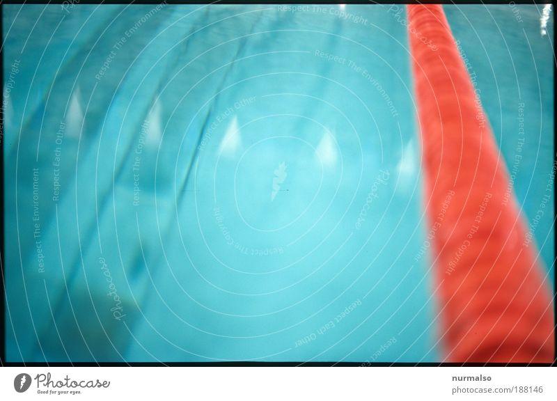 Seepferdchen Vers. A Wasser Freude Sport Kunst Freizeit & Hobby Schilder & Markierungen nass Schwimmbad Wellness Schwimmsport rein Zeichen tauchen Fitness