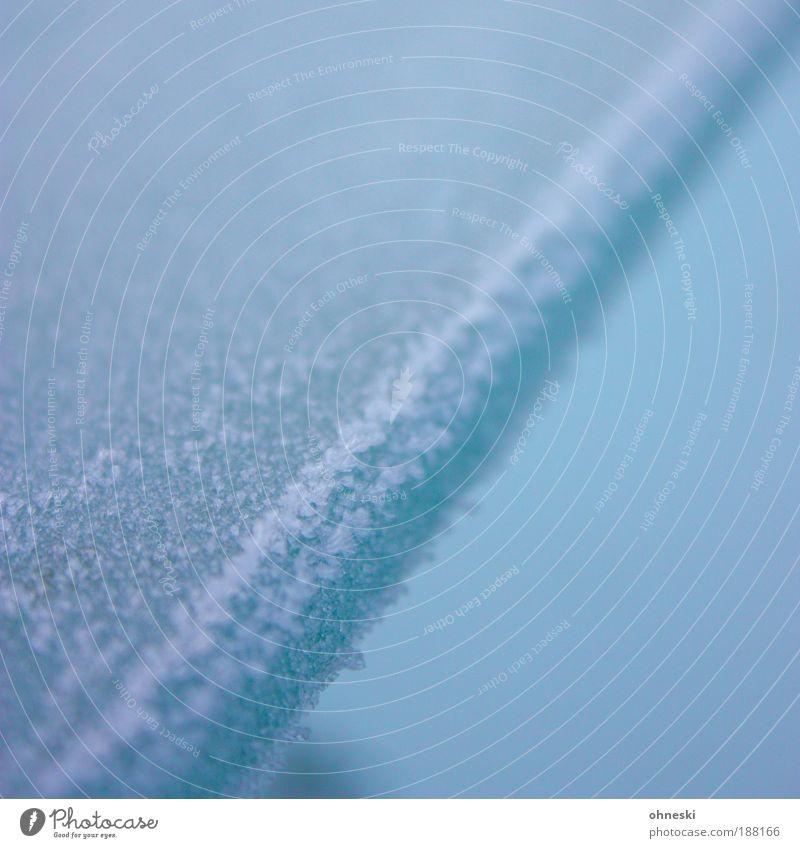 Kühl Winter Klima Wetter Eis Frost Glasscheibe kalt blau Gedeckte Farben Außenaufnahme Nahaufnahme abstrakt Muster Strukturen & Formen Textfreiraum oben