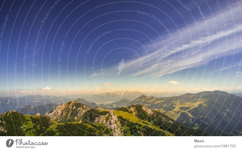 Zahmer Kaiser Blick Umwelt Natur Landschaft Urelemente Himmel Sonnenlicht Sommer Schönes Wetter Wärme Gras Sträucher Hügel Felsen Alpen Berge u. Gebirge Gipfel