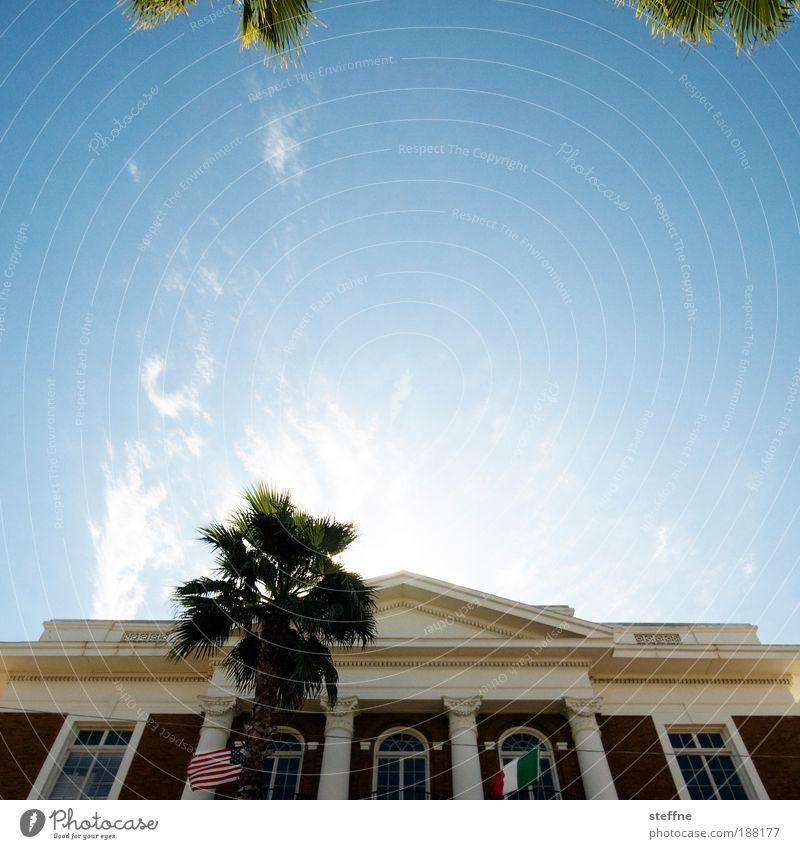 Weihnachtsbaum Sommer Haus USA Fahne heiß Italien Säule Palme Altstadt Florida Rathaus Frühlingsgefühle Kleinstadt Traumhaus Tampa