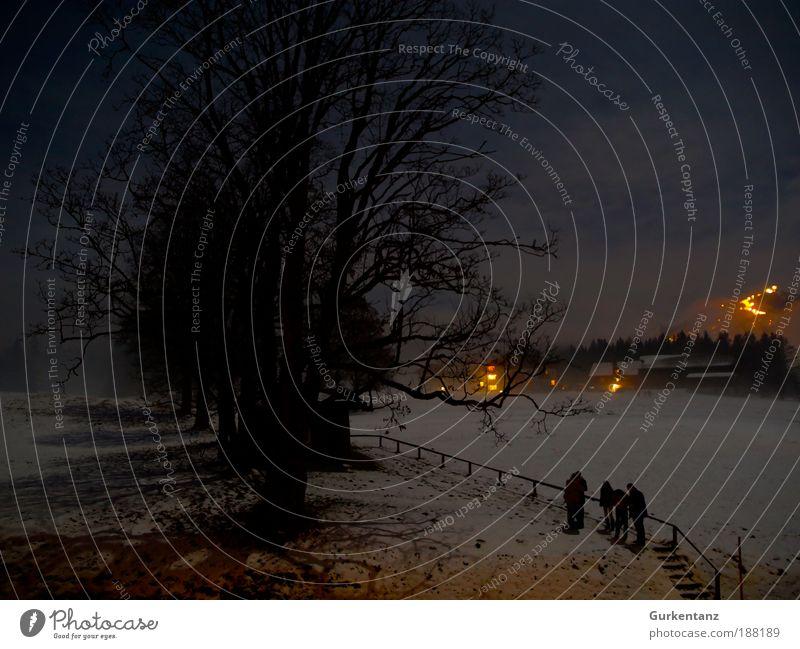 Feuer & Schatten Mensch Baum Winter schwarz Landschaft dunkel Wiese Berge u. Gebirge Schnee Menschengruppe Eis Feld Angst Feuer Urelemente Frost