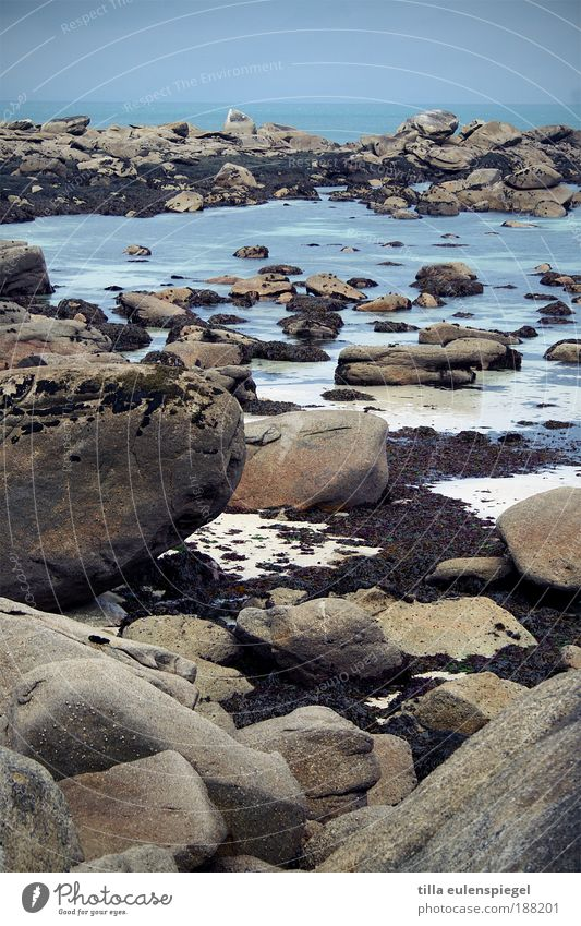 kein leichtes Badevergnügen. Ferien & Urlaub & Reisen Tourismus Ausflug Ferne Sommer Strand Meer Natur Herbst Felsen Küste Bucht Stein Wasser kalt nass