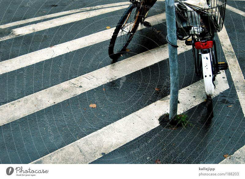 streifenwagen Stadt Straße Wege & Pfade Fahrrad Verkehr stehen Hinweisschild Streifen Zeichen Verkehrswege Fahrzeug Schloss Personenverkehr schließen