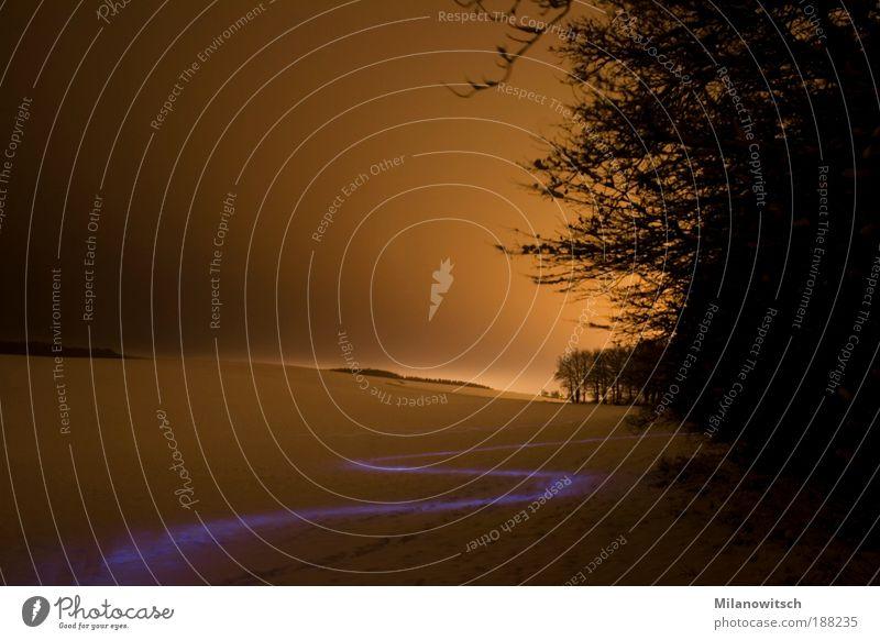 Geschlängel Natur Winter ruhig Einsamkeit Ferne gelb kalt Schnee Landschaft Bewegung Wege & Pfade Stimmung Feld gold Horizont laufen