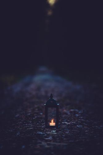 The Dark Side | wird erleuchtet Natur Landschaft Winter Wald dunkel Umwelt Herbst Wege & Pfade Kunst leuchten Klima Kerze geheimnisvoll Laterne gruselig Mond